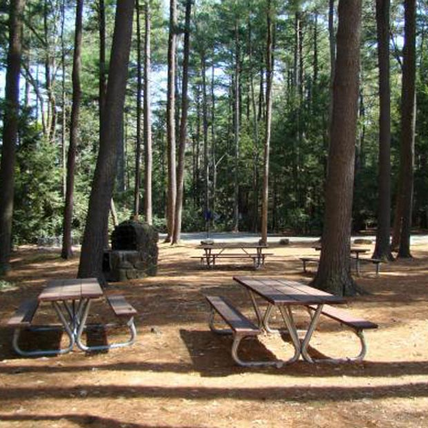 Picnic Area by Pavilion